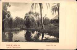 Postcard Brasilien, Hacienda de la familia Jijon, Lago de Piscicultura, Palmen