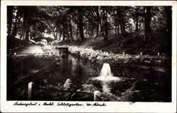 Postcard Ludwigslust in Mecklenburg Vorpommern, Schloßgarten, Gr. Mönch