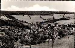 Postcard Heigenbrücken im Spessart, Blick auf den Ort, Wiesen, Obstbäume