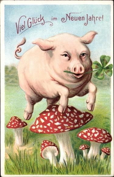 Postcard Glückwunsch Neujahr Schwein Fliegenpilze Akpoolcouk