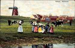 Ak Walcheren Zeeland Niederlande, Kinder in Tracht, Kühe auf der Weide, Mühle