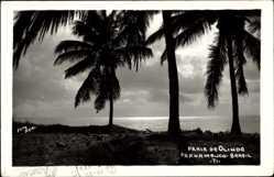 Foto Ak Pernambuco Brasilien, Praia de Olinda, Strand, Palmen