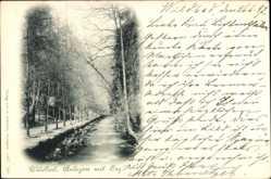 Postcard Bad Wildbad im Kreis Calw Baden Württemberg, Anlagen mit Enz