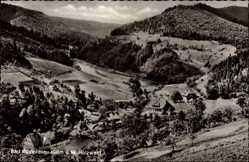 Postcard Bad Rippoldsau Schapbach im Schwarzwald, Blick auf den Ort, Holzwald