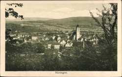 Postcard Nürtingen im Kreis Esslingen, Blick auf den Ort, Kirche, Felder, Wald