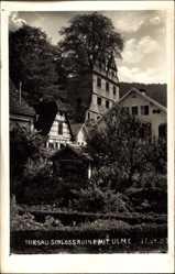 Foto Ak Hirsau Calw im Nordschwarzwald, Blick auf Schlossruine mit Ulme