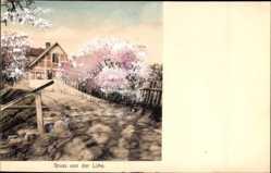 Postcard Lühe Jork im Kreis Stade, Serie Doppelton, Weg zum Haus führend