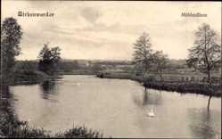 Postcard Birkenwerder im Kreis Oberhavel, Mühlenfliess, Flusspartie, Schwäne
