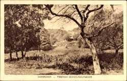 Postcard Saarbrücken im Saarland, Forsthaus Deutsch Mühlenweiher