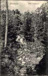 Postcard Eberswalde im Kreis Barnim, Blick auf den alten Wasserfall, Wald