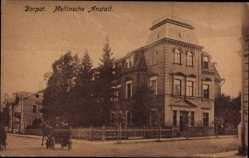 Postcard Tartu Dorpat Estland, Mellinsche Anstalt, Straßenpartie, Pferdekutsche