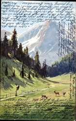 Künstler Ak Splitgerber, Hirsche im Tal, Gebirge, Feldweg
