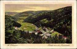Postcard St. Blasien, Stadtpanorama von der Preensruhe, Talansicht, Häuser