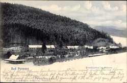 Postcard Bad Pyrmont in Niedersachsen, Das Friedensthal im Schnee