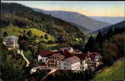 Postcard Bad Rippoldsau Schapbach im Schwarzwald, Stadtpanorama, Wald
