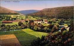 Postcard Thiergarten Beuron, Stadtansicht, Flusspartie, Waldhang, Felder