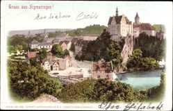 Postcard Sigmaringen an der Donau, Blick auf den Ort mit Schloss