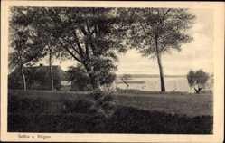 Postcard Ostseebad Sellin auf Rügen, Blick auf ein Fischerhaus mit Umgebung