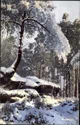 Ak Königstein an der Elbe, Nenke und Ostermaier 90 2071, Winter