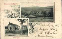 Ak Hohegeiss Braunlage, Stadtpanorama, Kastenshotel, Wiesen