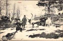 Ak Norwegen, Lappar, Lappländer, Winter, Schnee, Elche