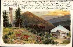 Litho Gehlberg im Ilm Kreis Thüringen, Schneekopf, Schmücke, Rehe, Aussichtsturm