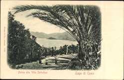 Ak Lago di Como Lombardia, Palme alla Villa Serbelloni