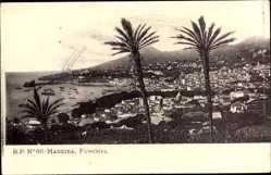 Postcard Insel Madeira Portugal, Funchal, Gesamtansicht des Ortes