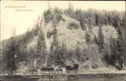 Postcard Tambach Dietharz im Thüringer Wald, Dietharzergrund, Napoleonstein