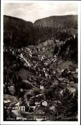 Postcard Triberg badischer Schwarzwald, Blick auf die Ortschaft, Wald, Berge