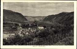 Postcard Rech Rheinland Pfalz, Stadtpanorama, Berge, Talansicht, Gebäude, Dernau