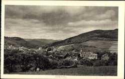 Postcard Adenau im Kreis Ahrweiler Rheinland Pfalz, Stadtpanorama, Felder, Wald