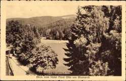 Postcard Bad Sachsa, Blick vom Hotel Fürst Otto von Bismarck, Felder, Wald