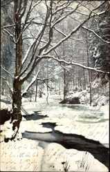 Ak Polenztal, Winterlandschaft, Nenke und Ostermaier 119 2405