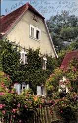 Ak Sommerlandschaft, Rosenblüte, Nenke und Ostermaier 83 1992