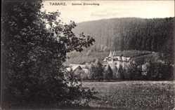 Postcard Tabarz im Thüringer Wald, Schloss Zimmerberg