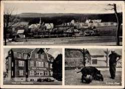 Postcard Würgendorf Burbach Siegerland, Hotel zur Wasserscheide, Oswald, Wildschweine