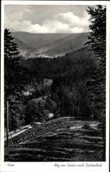 Postcard Lautenthal Langelsheim am Harz, Weg von Seesen nach Lautenthal