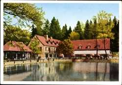 Postcard Leopoldstal Horn Bad Meinberg im Kreis Lippe, Pension Silbermühle, W. Schäfer
