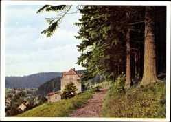 Postcard Tanne Oberharz am Brocken, Pension und Cafe Sanssouci, H. Greese
