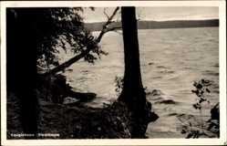 Postcard Neuglobsow Stechlin im Kreis Oberhavel, Blick auf den Stechlinsee