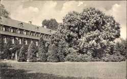 Postcard Keilsdorf Riedenburg Niederbayern, Kastanienbaum, Gebäude, Wiese