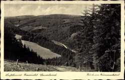 Postcard Freienohl Meschede im Hochsauerlandkreis, Das Rümmecketal
