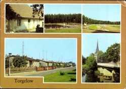 Postcard Torgelow an der Uecker, Museum, Schwimmstadion, Spartakusstadion, Siedlung