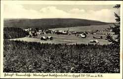 Postcard Deutscheinsiedel Deutschneudorf Erzgebirge, Blick auf den Ort, Felder, Wald