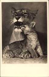 Postcard Berlin Tiergarten, Zoologischer Garten, Löwenmutter mit Junges