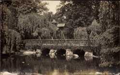 Postcard Berlin Tiergarten, Zoologischer Garten, Brücke zur Waldschänke