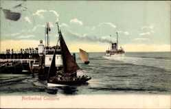 Postcard Cuxhaven in Niedersachsen, Alte Liebe, Dampfer Cobra