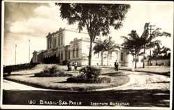 Foto Ak São Paulo Brasilien, Instituto Butantan, Palmen, Gebäude