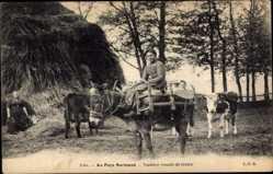 Postcard Au Pays Normand, Vachère venant de traire, Frau auf einem Esel